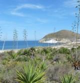 Parc Naturel du Cap de Gata - Almeria © Andha Luz