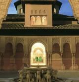 Cours des Lions de l'Alhambra © Turgranada